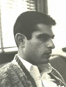 David Israel  Sepsenwol