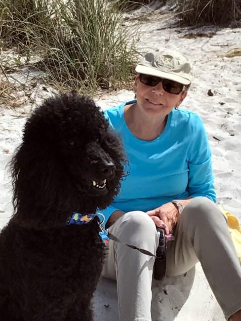 Obituary of Linda B. Dart