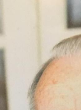 William Fred  Hefner Sr.