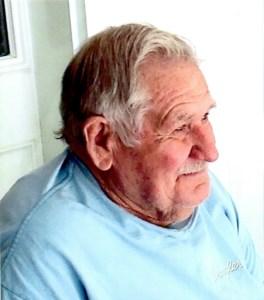 Owen W.  Lada