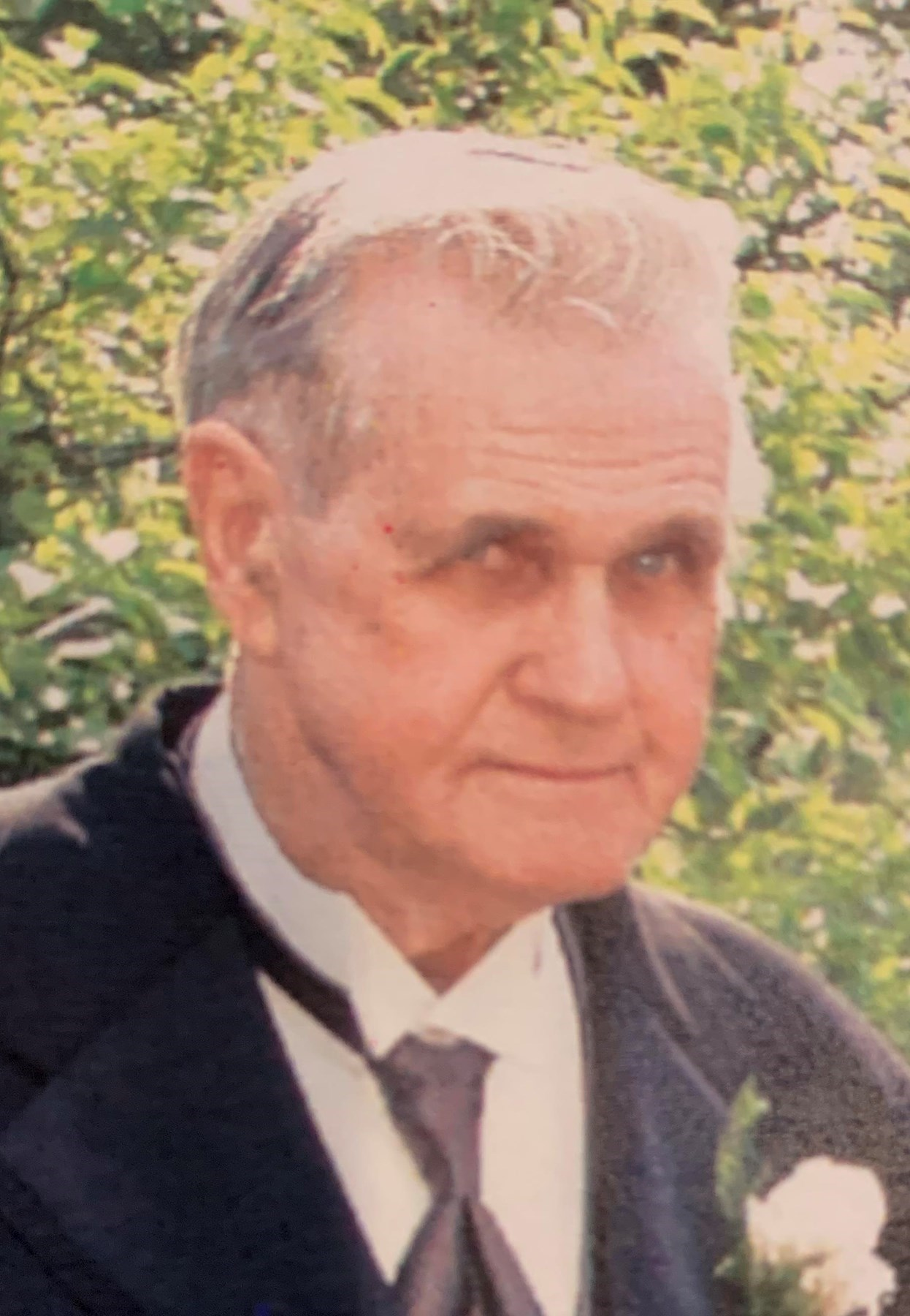 Harold L.  McCreery