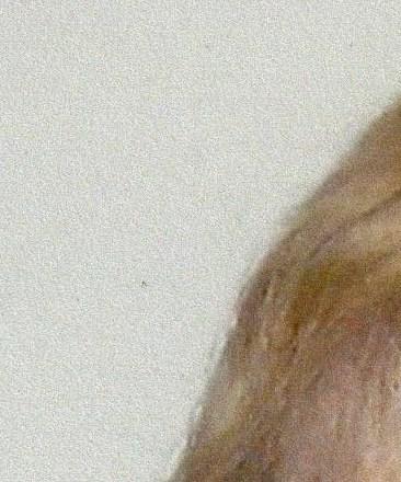 A. Doris  Lambert